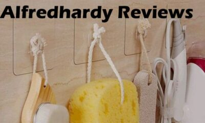 Alfredhardy Reviews